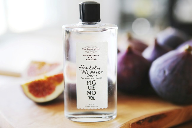 Fig Beauty 1-Store-of-Ma-Figue-Nova