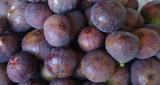 bursa figs
