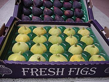 WF-Half-Tray-Figs