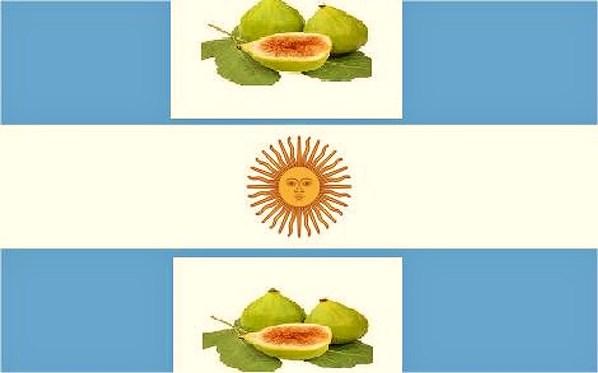 bandera-argentina-2