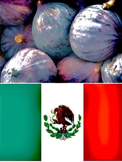 higos-mexico