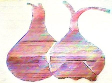 higos-negros-turquia