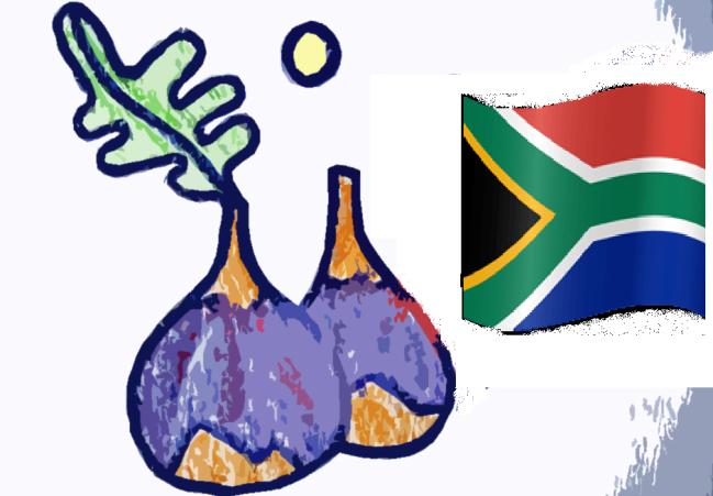 higos-sudafrica