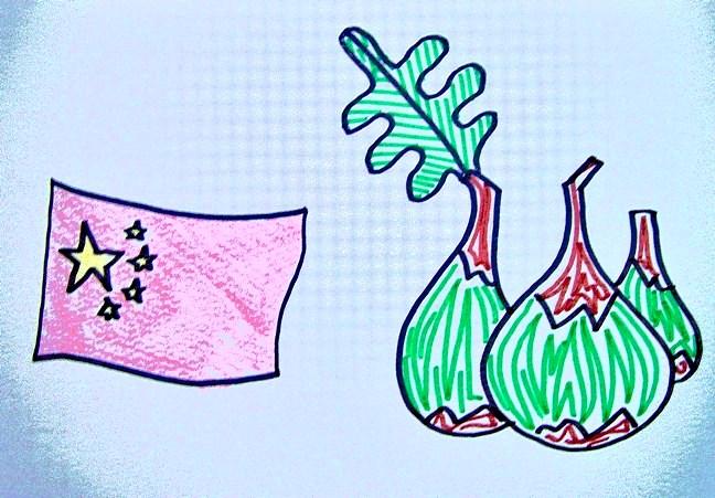 higos china