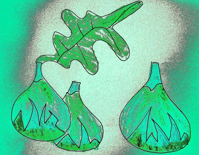 higos verde