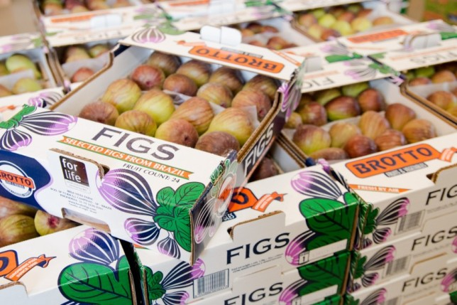 brotto figs